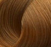 Крем-краска для волос Studio Professional (738, 8.34, светлый золотисто-медный блонд, 100 мл, Базовая коллекция, 100 мл) фото