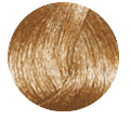 Купить Стойкая крем-краска без аммиака B. Life Color (2901, 9.01, очень светный блондин пепельный, 100 мл, Осветлители), FarmaVita (Италия)