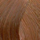 Londa Color - Стойкая крем-краска (81644486, 8/43, светлый блонд медно-золотистый, 60 мл, Base Collection) фото