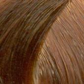 Londa Color - Стойкая крем-краска (81455826/81293944, 8/4, светлый блонд медный, 60 мл, Base Collection, 60 мл) фото