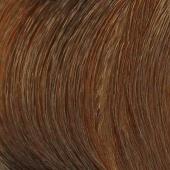 Купить Краска для волос Revlonissimo NMT (7206349834, High Coverage, 8-34, 60 мл, ореховый светлый блонд), Revlon (Франция)