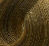 Купить Стойкая крем-краска Hair Light Crema Colorante (LB10469, Базовая коллекция оттенков, 8.003, 100 мл, светло-русый натуральный баийа), Hair Company Professional (Италия)
