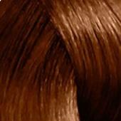 Купить Стойкая краска Revlonissimo Colorsmetique RP (7219914063, Базовые оттенки, 6.3, 60 мл, темный блонд золотистый), Revlon (Франция)