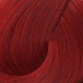 Купить Стойкая крем-краска Igora Royal (Красный микстон, 1689073, Специальные микстона, 0-88, 60 мл, 60 мл), Schwarzkopf (Германия)