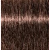 Купить Стойкая крем-краска для волос Indola Professional (2264698, 4.60, Средний коричневый красный натуральный, 60 мл, Для седых волос Ageless), Indola (Германия)