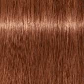 Купить Стойкая крем-краска для волос Indola Professional (2264946, 7.38+, Средний русый золотистый шоколадный интенсивный, 60 мл), Indola (Германия)