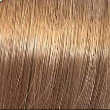Купить Koleston Perfect - Стойкая крем-краска (8742, 8/3, светлый блонд золотистый, 60 мл, Базовые тона), Wella (Германия)