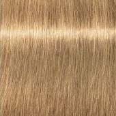 Купить Стойкая крем-краска для волос Indola Professional (2264976, 9.03+, Блондин натуральный золотистый интенсивный, 60 мл), Indola (Германия)