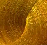 Купить Перманентная крем-краска XG Color (421405, Чистые пигменты, GOLD 33, 90 мл, GOLD 33), Paul Mitchell (США)